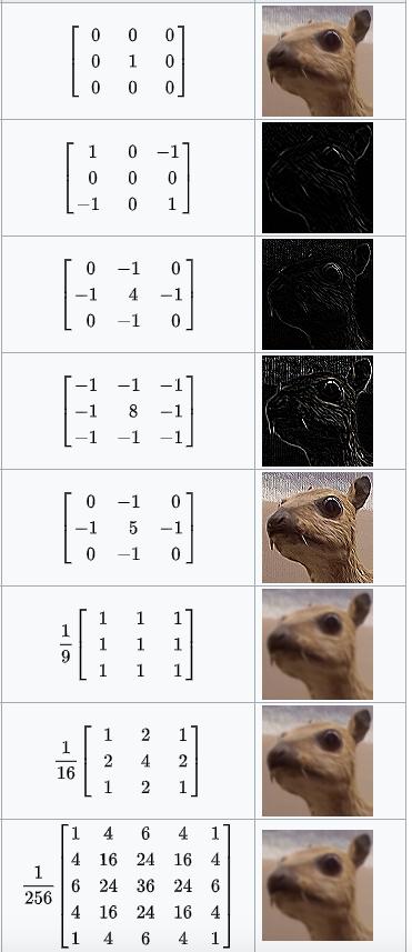 图5 对同意图片使用不同卷积核的效果
